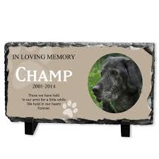 dog memorial dog memorial plaque