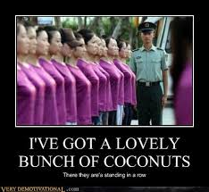 Boobs Meme - i ve got a lovely bunch of coconuts very demotivational