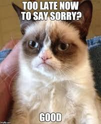 Sorry Memes - grumpy cat meme imgflip