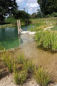 Backyard Swimming Ponds by 117 Best Natural Pool Images On Pinterest Natural Pools Natural