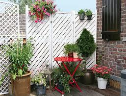 topfpflanzen balkon terrasse und balkon mein eigenheim