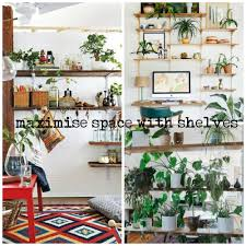 home decor shelves gorgeous ways to decorate your home with plants