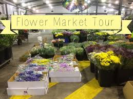 flower wholesale melbourne wholesale flower market tour your last chance to join