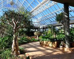 Kirstenbosch Botanical Gardens Gardensonline Garden Of World Kirstenbosch National Botanical Garden