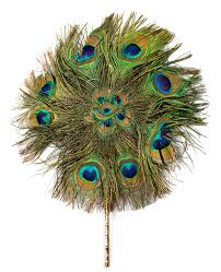 peacock fan peacock fan isolated stock photo image of decorated 9306162