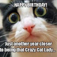 best 25 happy birthday friend best 25 happy birthday best friend quotes ideas on