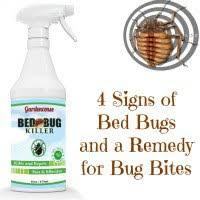 natural bed bug remedies a complete guide to bed bugs signs traps and remedies