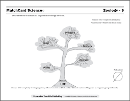 biology tree of life