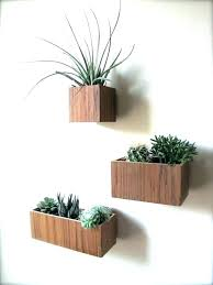 plant wall hangers indoor wall mounted planters indoor wall mounted planters indoor wall wall
