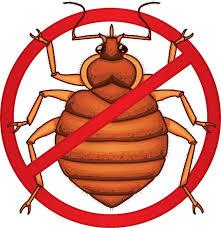 Bug Na Rug Freezing Bed Bugs