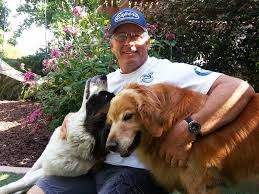 Area Rugs Orange County Ca Pet Stains And Odor Removal Expert Carpet Care Inc La U0026 Oc