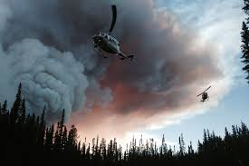 Canada Wildfires by Fighting To Breathe In The Face Of Canada U0027s Wildfire Emergency
