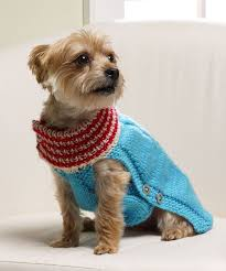 81 best knitting dog sweaters images on pinterest dogs dog