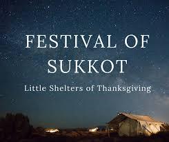 festival of sukkot shelters of thanksgiving brewing wisdom