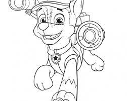 paw patrol cartoonito