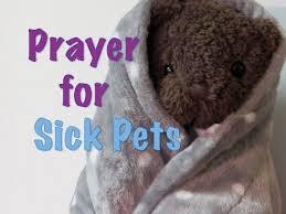 pet prayer prayer for a sick pet