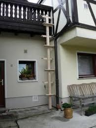 katzenleiter balkon katzentreppe xl katzenleiter natur katzenbaum douglasie