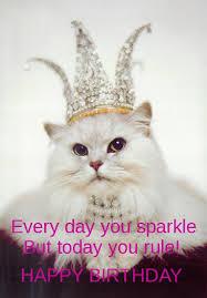 Birthday Princess Meme - happy birthday meme for her funny bday pinterest princess