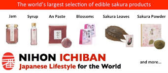 list of kanji for jlpt n5 u2013 nihongo ichiban