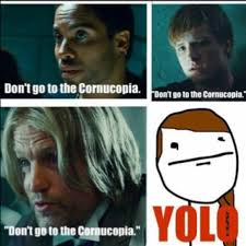Hunger Games Memes Funny - 76 best hg images on pinterest the hunger games game of and the