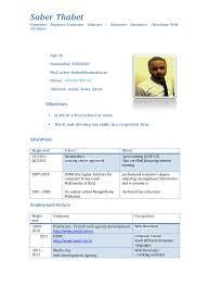 Web Developer Resume Cv It Computer Software Web Developer