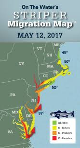 striper migration map may 12 2017 on the water