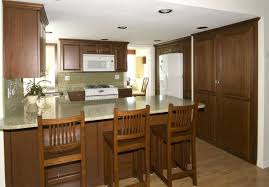 kitchen cabinets nj wholesale interior inexpensive kitchen cabinets gammaphibetaocu com