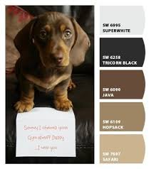 front porch floor paint color sherwin williams sw3007 lodge