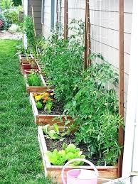 Small Vegetable Garden Design Ideas Small Vegetable Garden Plans Small Vegetable Gardens Ideas Small
