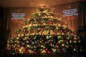 nanaimo info blog the singing christmas tree dec 2012