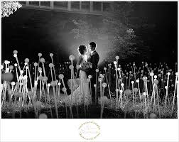 franklin park conservatory wedding anah s franklin park conservatory sneak peek columbus