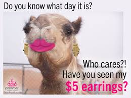 Meme Accessories - hump day paparazzi jewelry funny meme