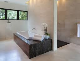 Open Shower Bathroom Design by Open Space Bathroom Design With Chic Walk In Shower And Adorable