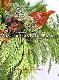 The Summer And Winter Garden - best 25 winter hanging baskets ideas on pinterest hanging