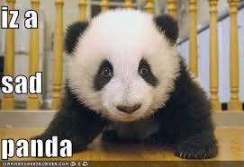 Sad Panda Meme - image 64571 sad panda know your meme