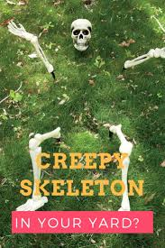 Skeleton Halloween Crafts 86 Best Halloween Crafts Images On Pinterest Halloween Crafts