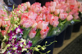 Flowers For Sale Spring Flowers For Sale Stock Photo Image 66961462