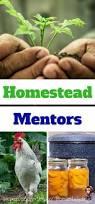677 best homesteading images on pinterest homestead survival