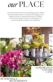 flower shops in dallas careers with dr delphinium