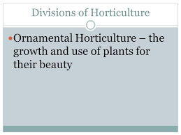 dhs agriculture exploring horticulture warm up using only the