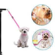 dog grooming tables for small dogs pet dog grooming leash adjustable nylon grooming table arm