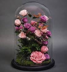 forever roses enjoy gorgeous real life beauty and the beast roses they ll bloom