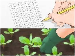 4 ways to design a garden wikihow