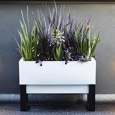 glowpear urban garden self watering planter