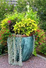 Planter Garden Ideas Large Outdoor Planter Ideas Miketechguy