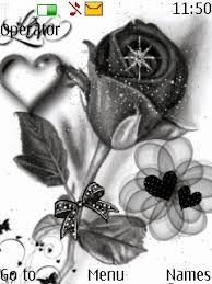 theme black rose download black and white rose nokia theme mobile toones