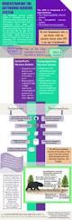 Nervous System Concept Map Best 25 Nervous System Ideas On Pinterest Nerve Cell Function