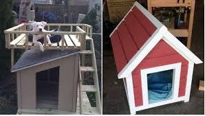 cool dog houses diy dog house