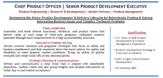 Mba Candidate Resume Us Based Chief Product Officer Candidate Profile It Tech Exec