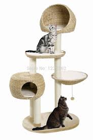 Instructables Cat Tree by The 25 Best Cat Trees For Sale Ideas On Pinterest Cat Room Cat